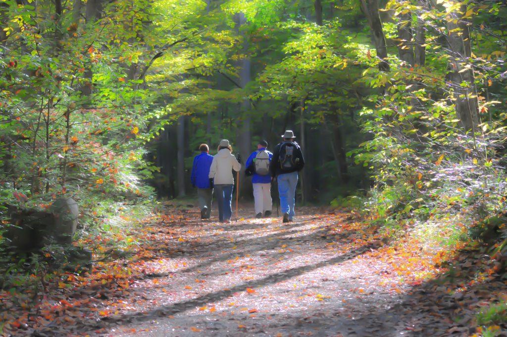cammino il viandante e il pellegrino